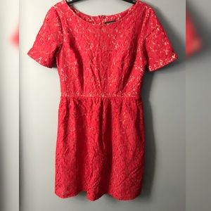 Red floral lace dress | size 12 |